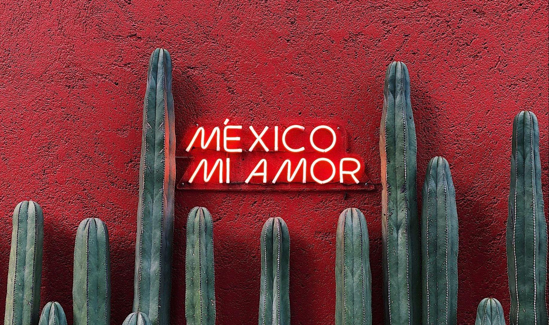 estacionamiento automatico en mexico